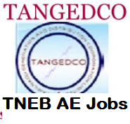 tneb ae recruitment
