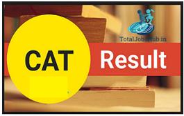 cat scorecard