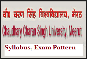 ccs university syllabus