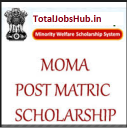 post matric moma scholarship