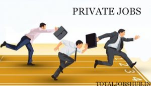 Private Jobs Vs Government Jobs- Best Career Options for Students