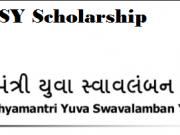 MYSY Scholarship form
