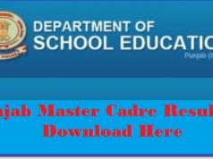 punjab master cadre result