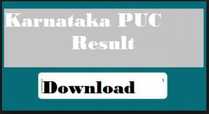 karnataka 2nd puc results