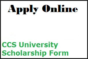 CCS University Scholarship