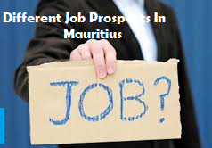 Different Job Prospects In Mauritius