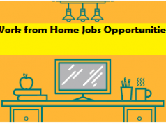 Work from Home Jobs Opportunities