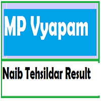 mp nayab tehsildar result