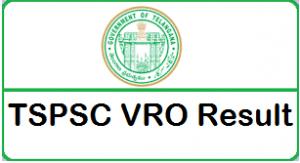 TSPSC VRO Results