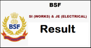 bsf si works result